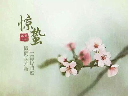 今日惊蛰,你听见春天绽放的声音了吗-新华网(图1)