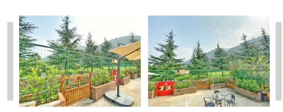 竹林里的老版火锅,左边有别墅,右边有凉亭(图8)